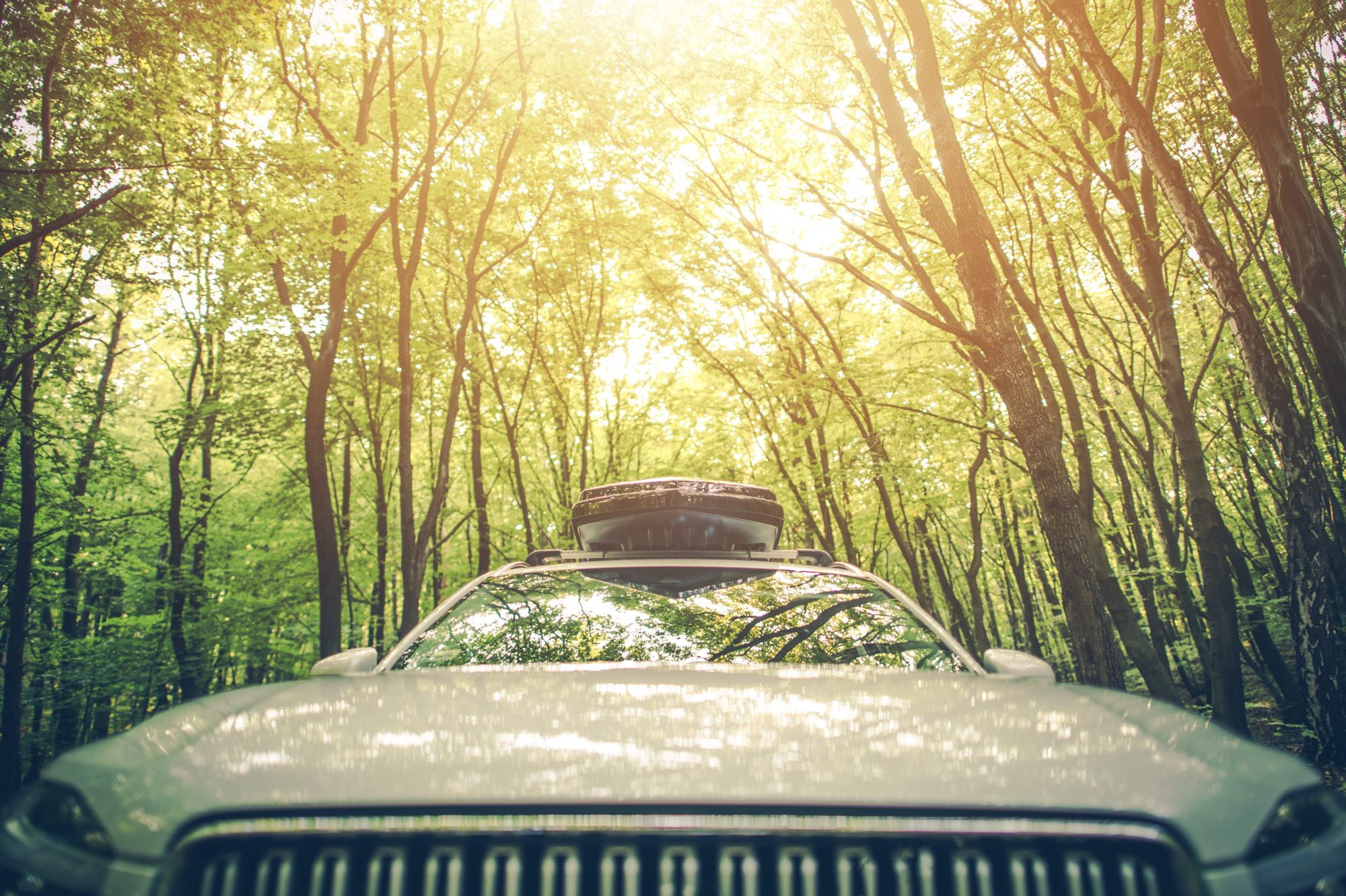 road-trip-checklist-driving